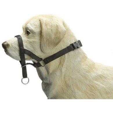 Beeztees Dog Control Schwarz