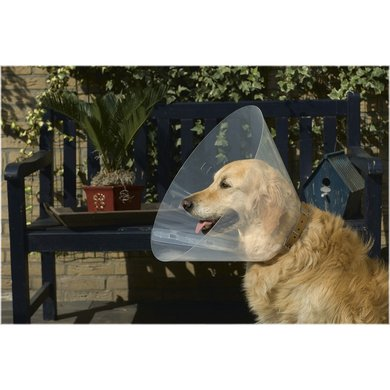 Beeztees Plastic Hondenkraag 28-33cm