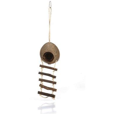 Beeztees Kokosnoot Huisje Met Ladder 30cm 30x10cm
