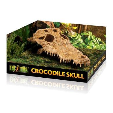 Exo Terra Krokodillenschedel 23x12x7,5cm