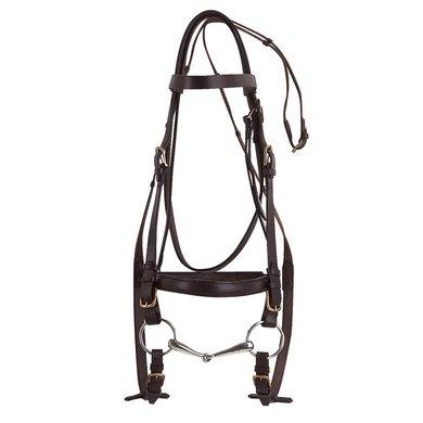 Excelsior Hoofdstel voor Trekpaard Zwart 4,5-3cm