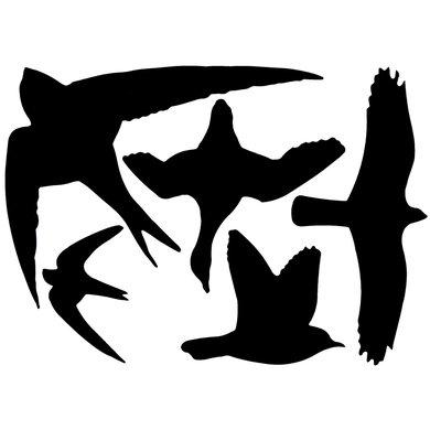 Esschert Raamstickers Vogel Assorti