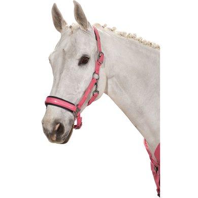 Eskadron Halster Doublepin Softshell CS21 Rouge Pony
