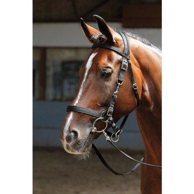 Harrys Horse Hoofdstel/halster Zwart Full