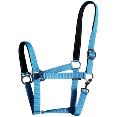 Harrys Horse Licol Padded Bleu clair