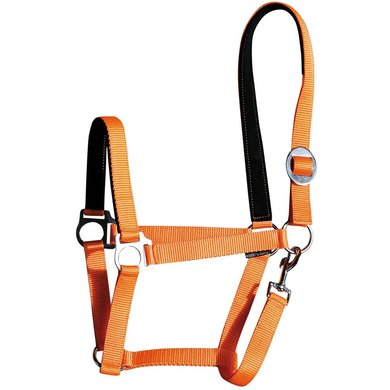 Harrys Horse Padded Halter Orange