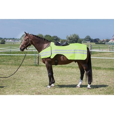 Harrys Horse Exercise Sheet Reflective reflective L