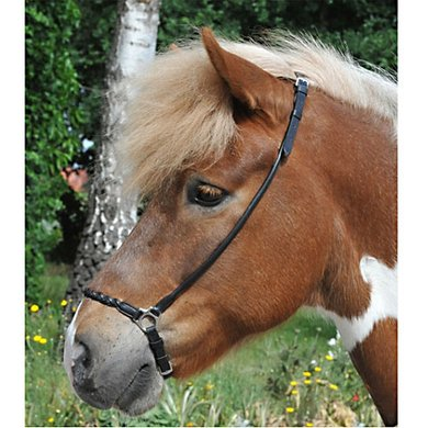 HKM Bridle For Icelandic Horses Black
