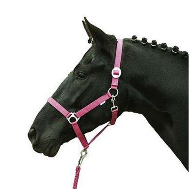 HKM Halster Stars Economy Softice Zacht Geel Pony