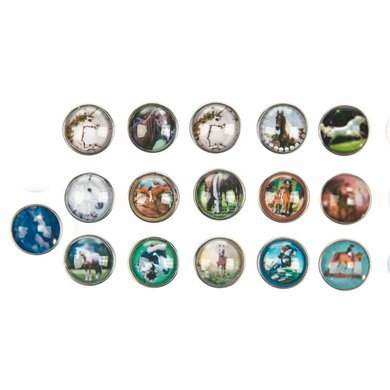 Hkm 16 decoratie knopen paarden plaatjes gesorteerd 16 18mm - Ad decoratie binnen ...