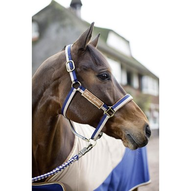 HKM Halster Roma Beige/Lichtblauw Pony
