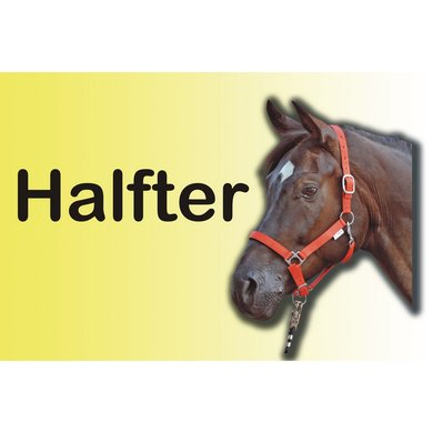 Hkm Productgids Halsters