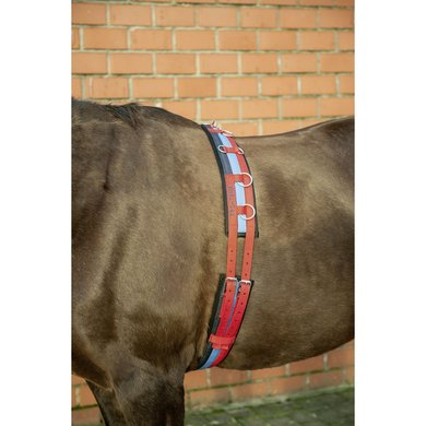 Hkm Pro Team Longeersingel Internat Rood/mblauw/navy Pony