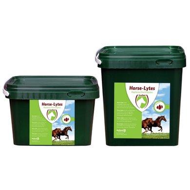 Excellent Horse Electrolytes Electrolyten & Energie 1kg
