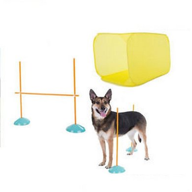 Agradi Agility Indoor Starter Kit