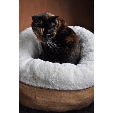 all for paws donut bett lammfell. Black Bedroom Furniture Sets. Home Design Ideas