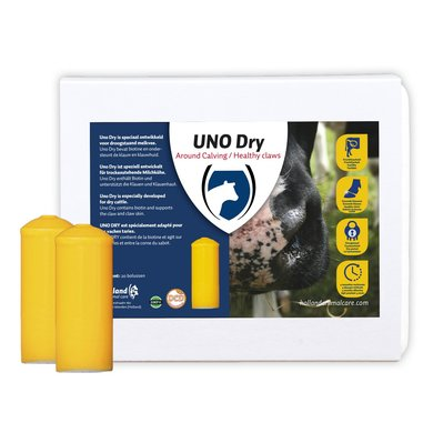 Excellent Uno Dry