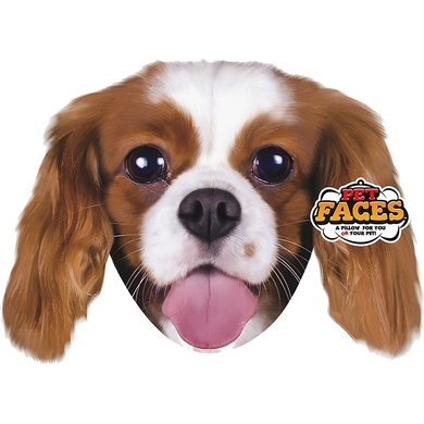 Pet Faces King Charles