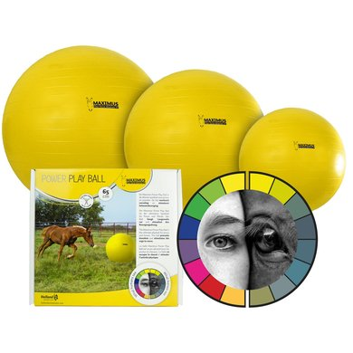 Maximus Power Play Ball Geel 100cm