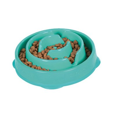 Agradi Fun Feeder Mini Teal Blau/Grün