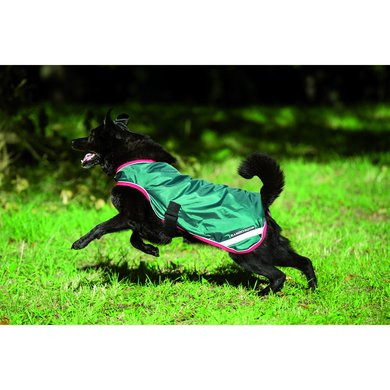 Rambo Waterproof Dog Rug 100g Green/Red Small