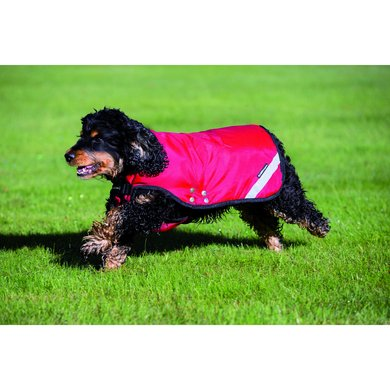 Rambo Duo Dog Rug Red/Black Large