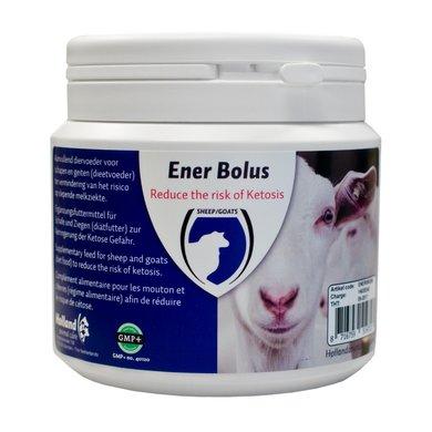 Excellent Ener Bolus Schaf & Ziege 24st