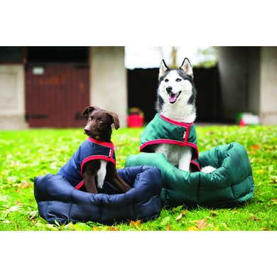Rambo Pillow Dog Bed Green Medium