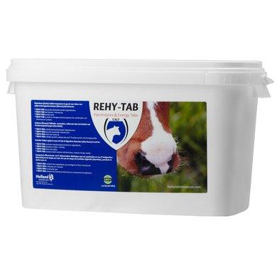 Rehy-Tab Brausetablette Kälberdurchfall 48 Tabl 48st