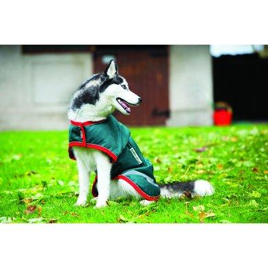 Horseware Dog Rug Green/Red Small