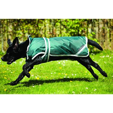 Rambo Duo Dog Rug Green/Silver Medium