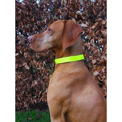 Horka Halsband Hond Reflectie Geel