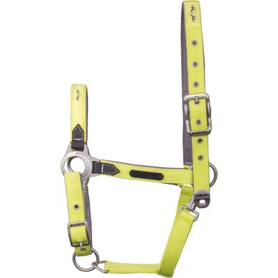 HV Polo Headcollar Gonia Lime P/S