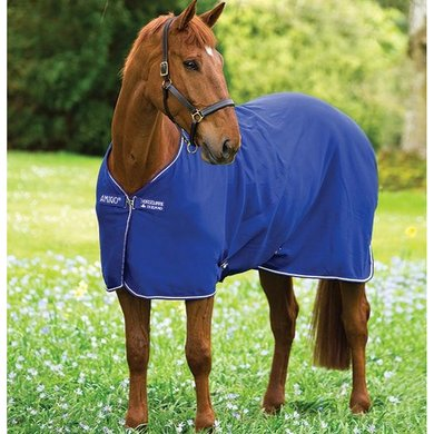 Amigo Jersey Pony Atlantic Blue
