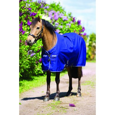 Amigo Pony Hero 6 Turnout Medium Atlantic Blue