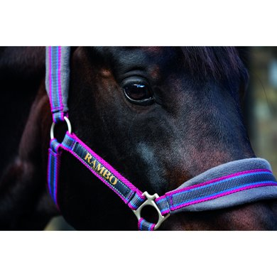 Rambo Headcollar Padded Charcoal Silver Grater