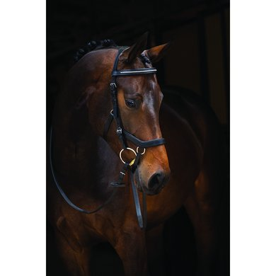 Rambo Micklem Diamante Competition Bridle Schwarz Cob
