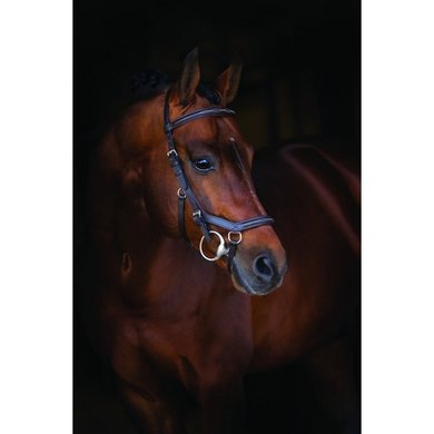 Rambo Micklem Deluxe Competition Bridle Zwart