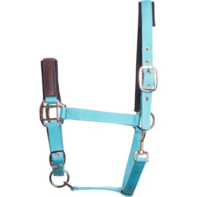Imperial Riding Halster Shadow Turquoise Cob