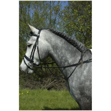 Imperial Riding JC Martingaal luxe Zwart Cob