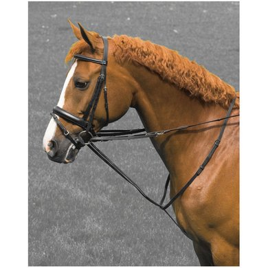 Imperial Riding Thiedeman teugel smal web Zwart Full