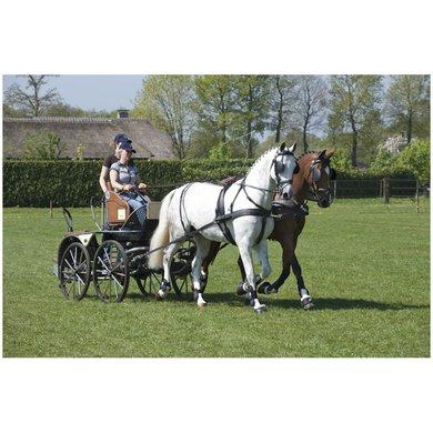 Imperial Riding Kent 2 span borsttuig kunststof RVS Shet
