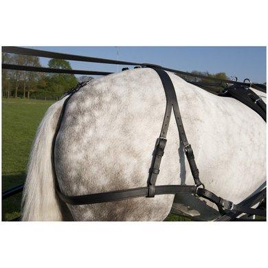 Imperial Riding Essex tuigbroek zwart RVS Pony