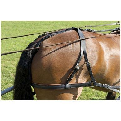 Imperial Riding Devon tuigbroek lenderiem Zwart/Bruin Full