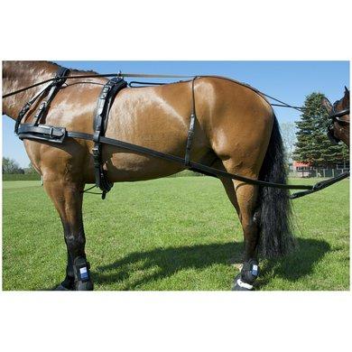 Imperial Riding Flex strengen per paar Zwart 230cm