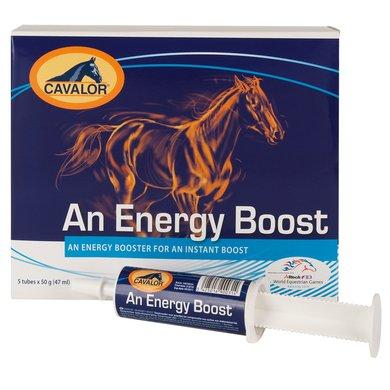 Cavalor Energy Booster 5x40ml