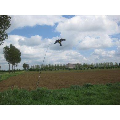 Terror Hawk Vogelverschrikker Non Twist + 4m hengel