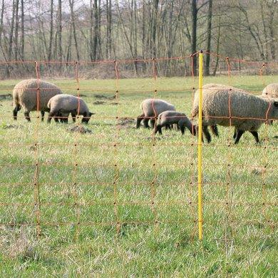 Kerbl Schafnetz einzeln Gelb 90cm
