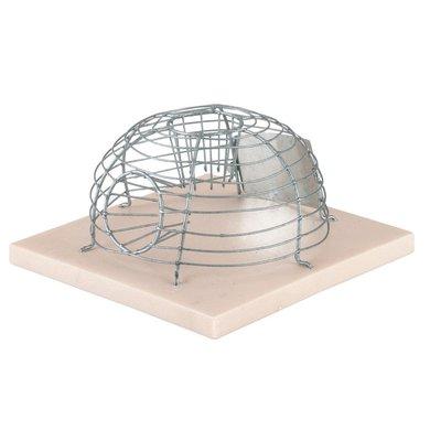 Kerbl Korb-Mausefalle MouseCage, mit 2 Eingängen
