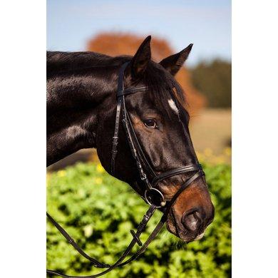 Kerbl Bridle Standard Eurohorse Black
